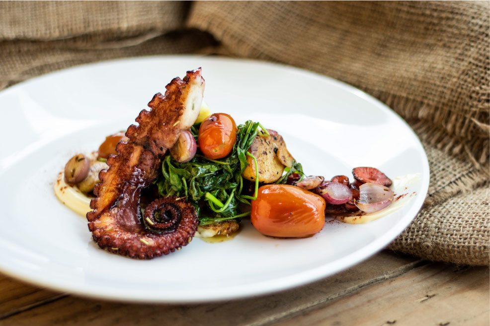 Sustainable-Seafood–Yucatan-Octopus