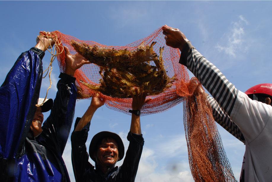 Covid-19 vs. vietnam shrimps industry